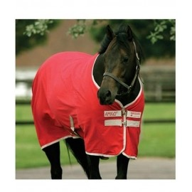 AMIGO STABLE/SUMMER SHEET HORSEWARE